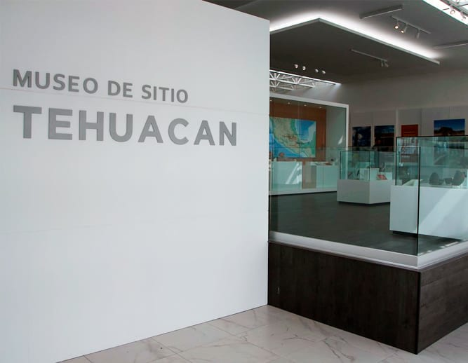 Proyecto Museo®️